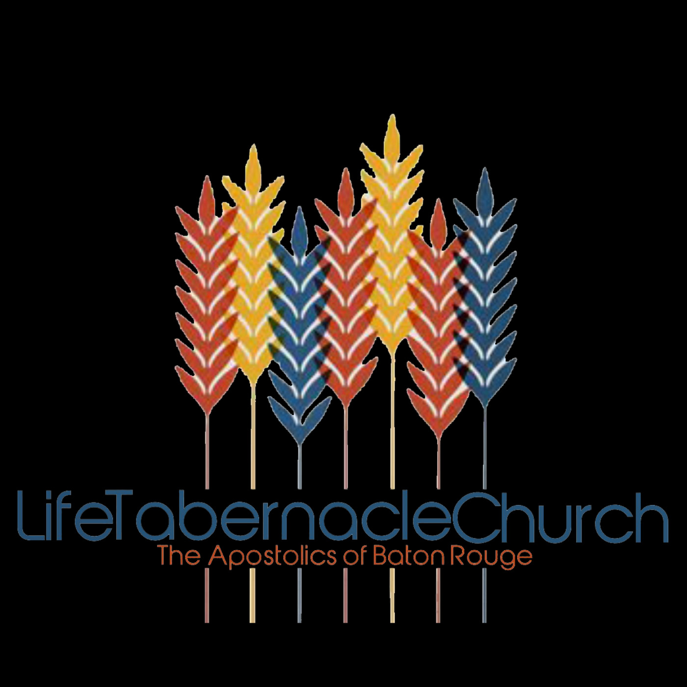 Life Tabernacle Church