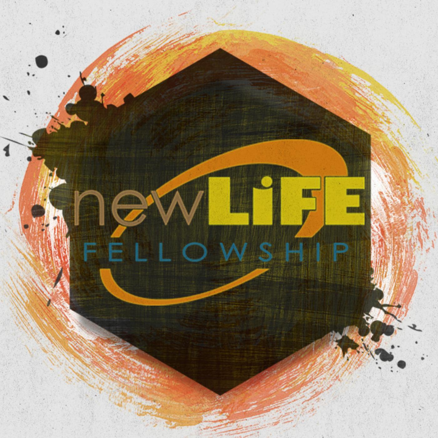NewLifeWired