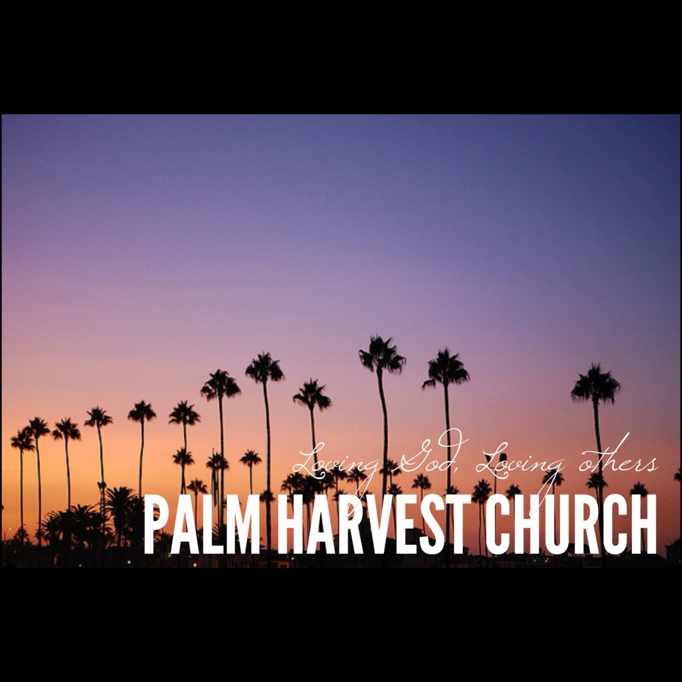 Dr. Mike Decker at Palm Harvest Church