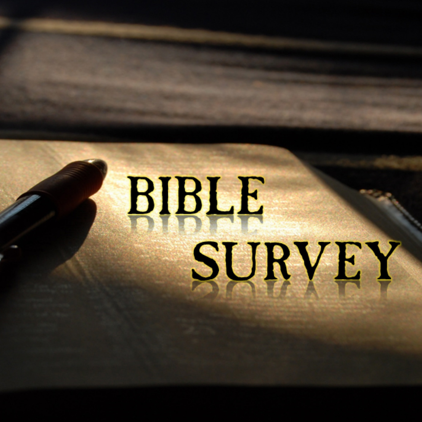 Twin Cities Grace Fellowship Bible Survey